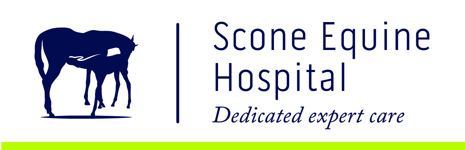 Scone Equine Hospital NEW.jpg
